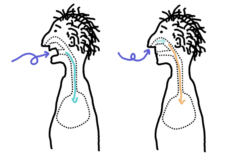 the nose warms the air better than the mouth - comic