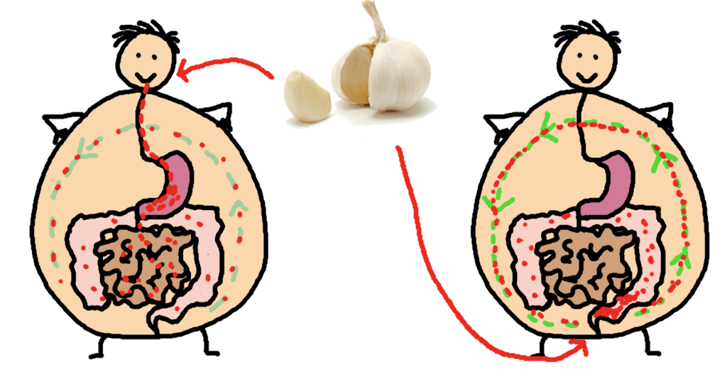 eat garlic or take it as a suppository - comic