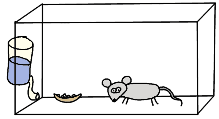 laboratory mouse - comic